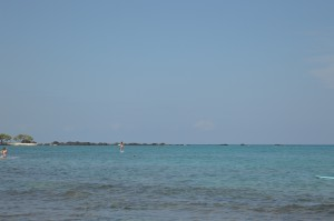 four_seasons_ocean_activities_0748